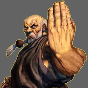 Gouken street fighter